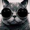 Реферальная ссылка (подарки и бонусы) - last post by -VlaDoS-